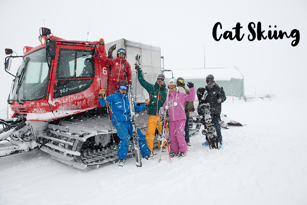 cat_skiing.jpg