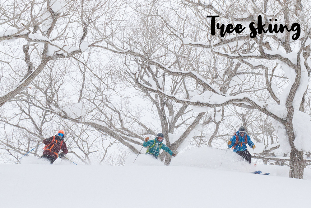 tree_skiing.jpg